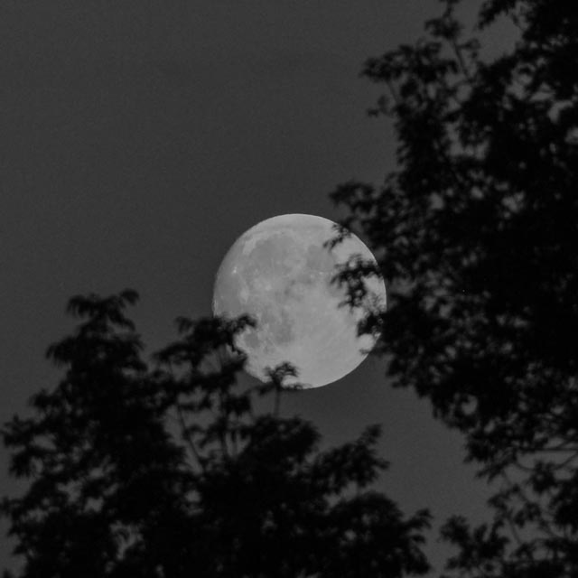supermåne...foto: AntoniaB 2015